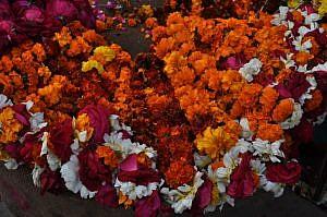 ayur-flower