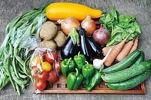 日曜マルシェには無農薬・無化学肥料のこだわり農産物が並ぶ
