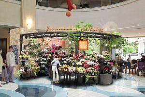 青山フラワーマーケット 鴨川・亀田メディカルセンター店