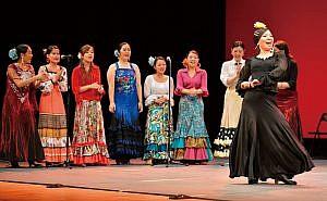 flamenco354