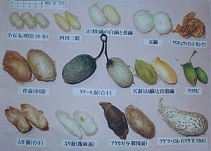 下村撚糸展示DM2