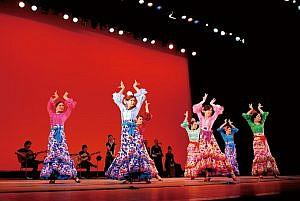 flamenco2011
